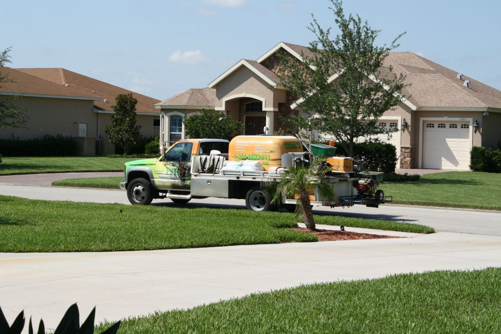 lakewood ranch insect control palm tree care